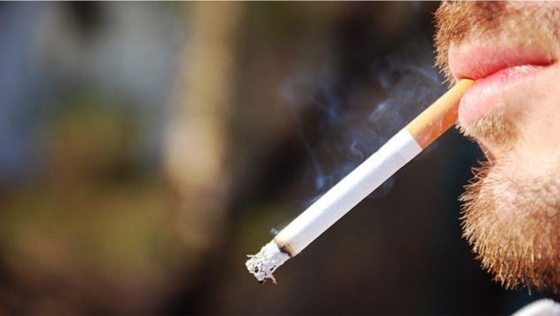 cigarja 1100x620