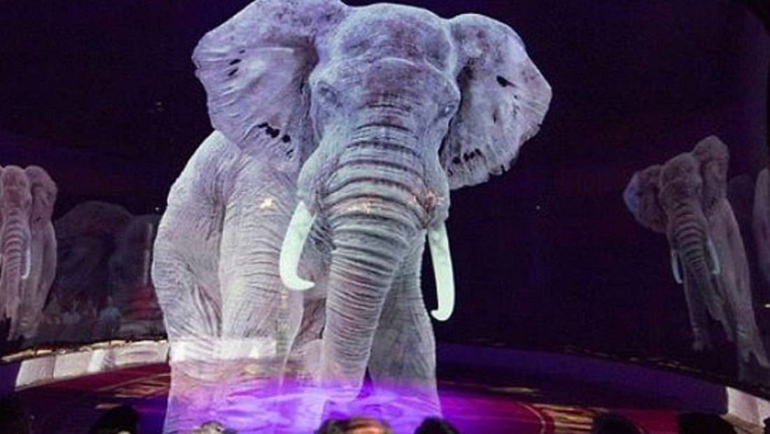 elefanti hologram 1100x620