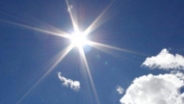 diell 600x338