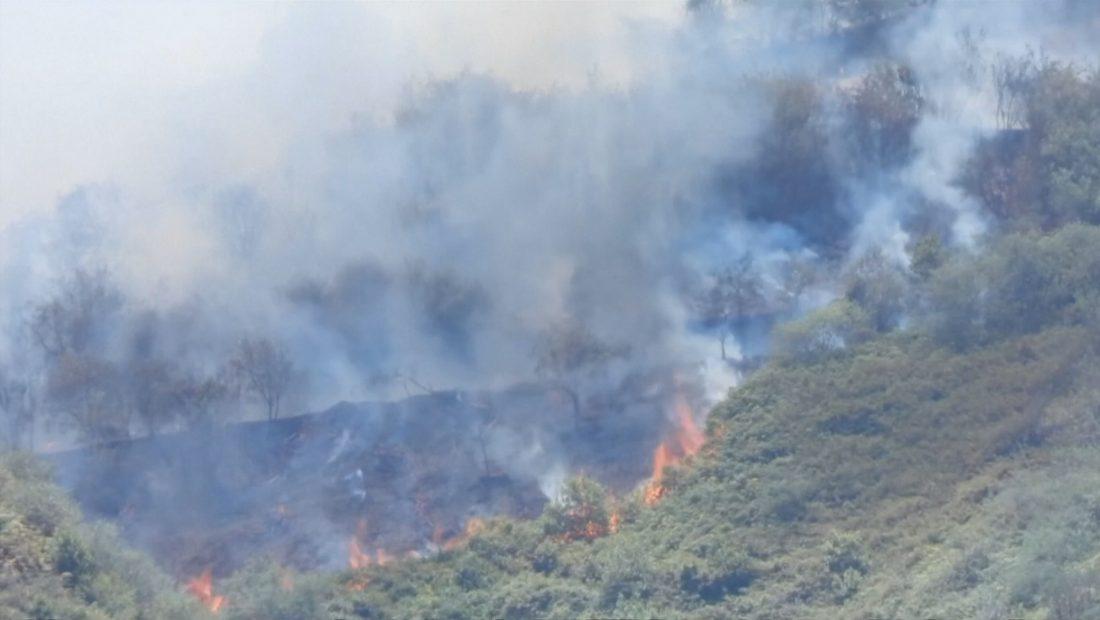 kanarie zjarri 1100x620