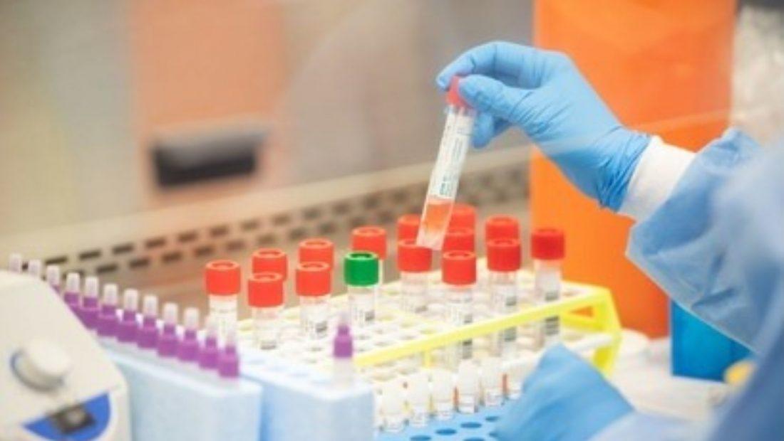 koronavirus proveza vaksina 1100x620