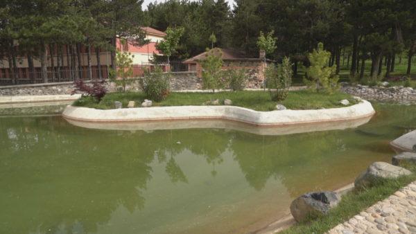 Korçë, mbytja e fëmijës, banorët: Bashkia duhej ta rrethonte basenin e ujit
