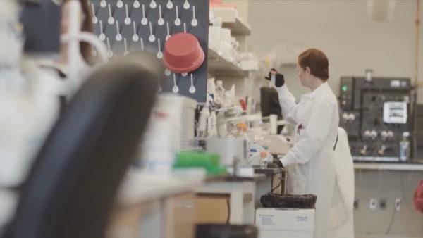 Vaksina kundër Covid-19, kompania amerikane: testet e para, premtuese
