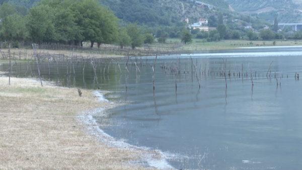 """Kukës, liqeni """"pushton"""" rregullisht tokat e mbjella"""