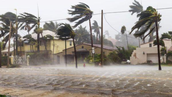 Fillon stina e uraganeve, 15 stuhi të fuqishme në Atlantik, deri në fund të nëntorit