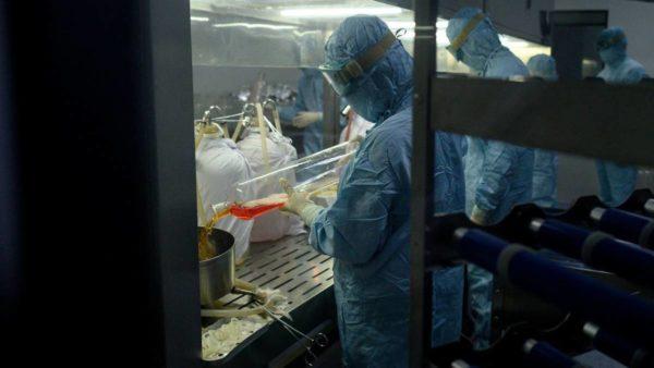 Mjeku italian: Koronavirusi ishte si tigër i tërbuar, sot është si mace e egër