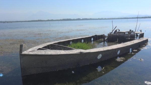 Ngrohja globale dhe mungesa e borës ulin nivelin e ujit në Liqenin e Shkodrës