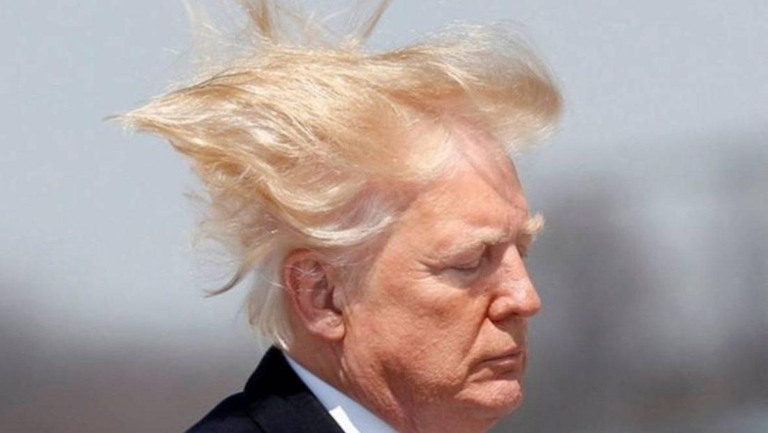 trump hair 1100x620