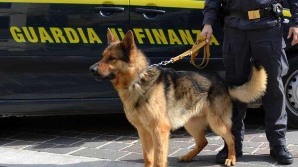 Shqiptarët kapen me 37 kg kokainë në Itali