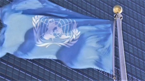75 vjet OKB, nga krizat humanitare te pandemia