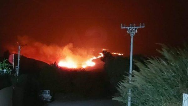 Zjarr në Tragjas të Vlorës, e vështirë ndërhyrja  e zjarrfikësve