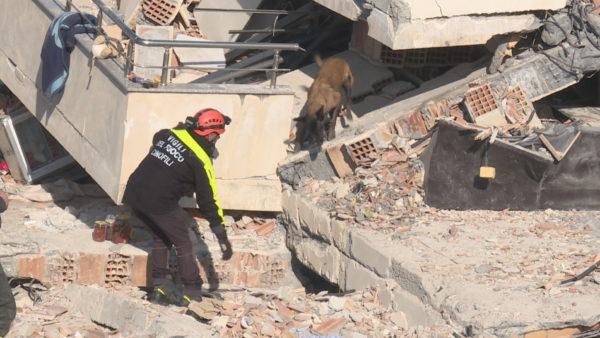 1 vit nga tërmeti, çfarë ndodhi me tokën shqiptare atë mëngjes nëntori?