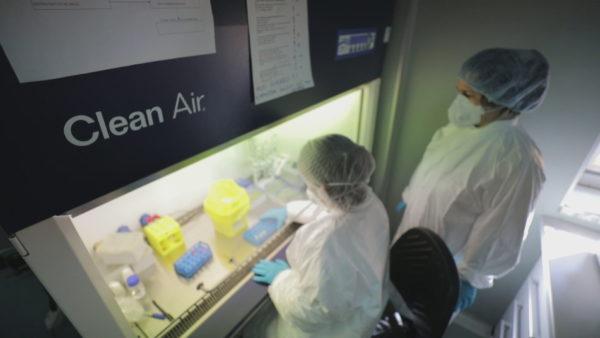 Situata me pandeminë, specialistët optimistë, por masat skadojnë në fillim të 2021