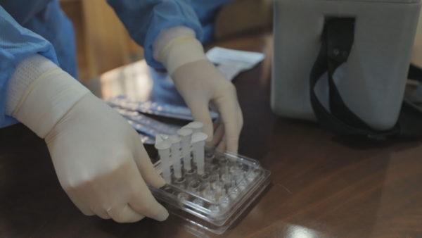 """Nis testimi i shpejtë, epidemiologët: Tirana, vatër e Covid-19, """"Astiri"""" zona më problematike"""