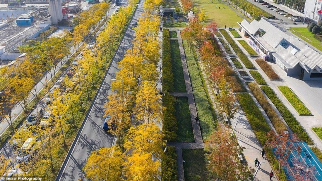 Aeroporti i braktisur shndërrohet në një park përrallor 1100x620