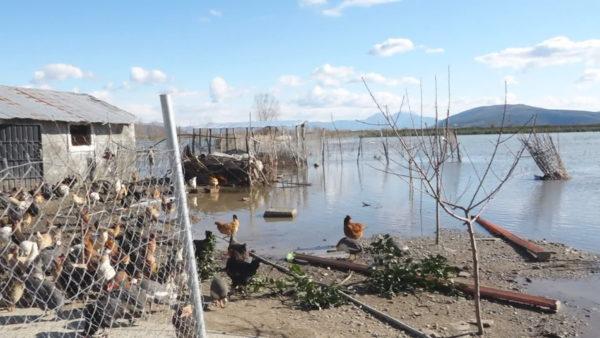 Apel për ndihmë, Ana e Malit, 22 ditë nën pushtetin e ujit