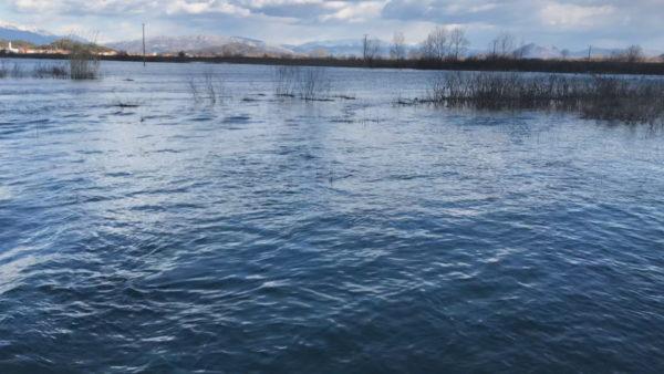 """Uji nuk ndalet në Shkodër, Peleshi """"përplaset"""" me Ademin për situatën"""
