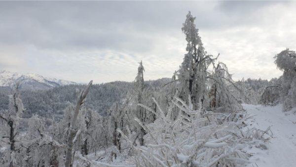 Iballa prej një jave e izoluar nga bora, prej 10 ditësh pa energji