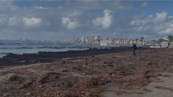 """Leshteriku """"zapton"""" vijën bregdetare në Durrës"""
