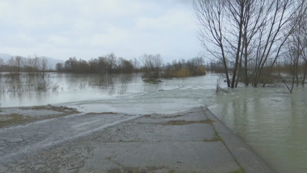 Përkeqësohet situata në Shkodër, rritet niveli i ujit dhe tokat e përmbytura