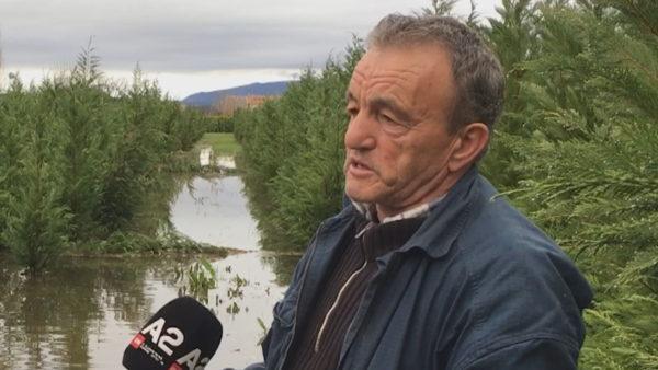 Apeli i fermerit në Dajç: Shteti të na ndihmojë, jemi të shkatërruar