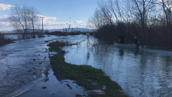 Situata e reshjeve në Shkodër: Shtohet sipërfaqja e përmbytur