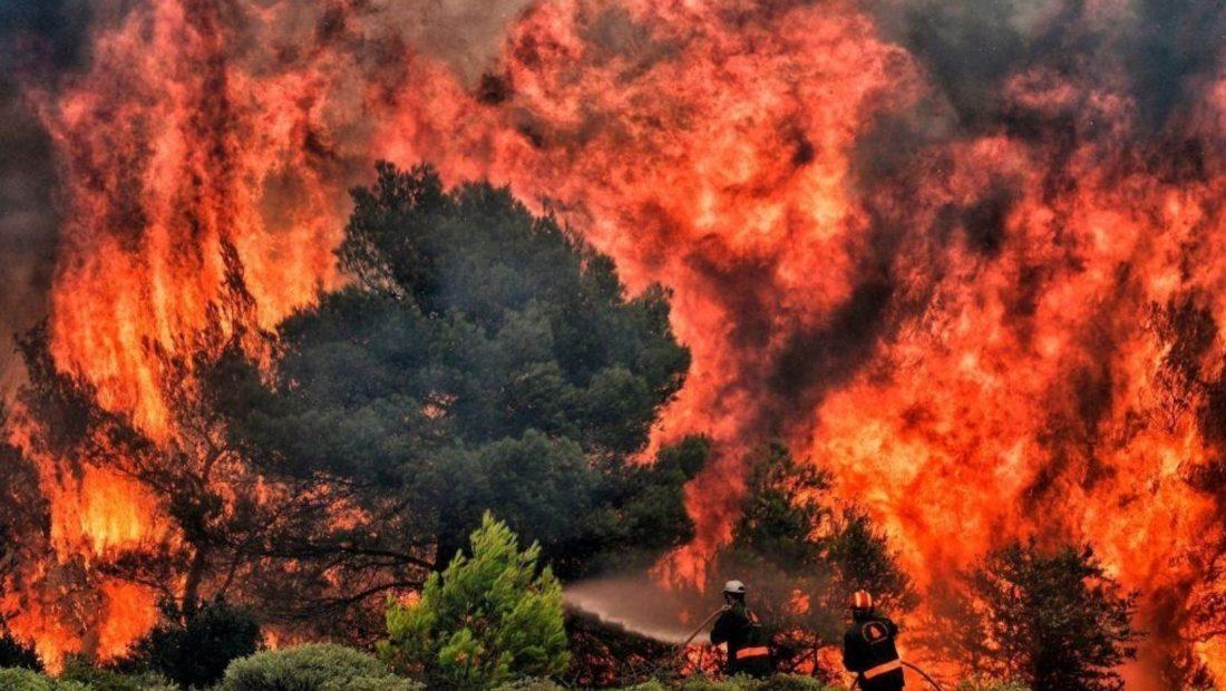 zjarr ne pyll 1100x620