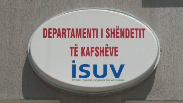 Frika nga gripi i shpendëve, ISUV: Nuk ka rrezik nga konsumimi i mishit dhe vezëve