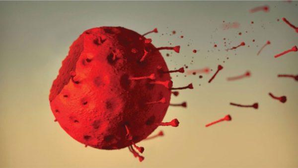 Pandemia drejt fundit? Vetëm 264 raste aktive në të gjithë Shqipërinë