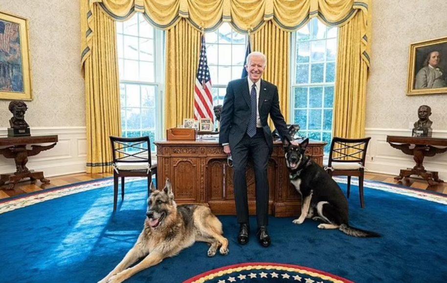 Joe Biden në zi, i ngordh qeni
