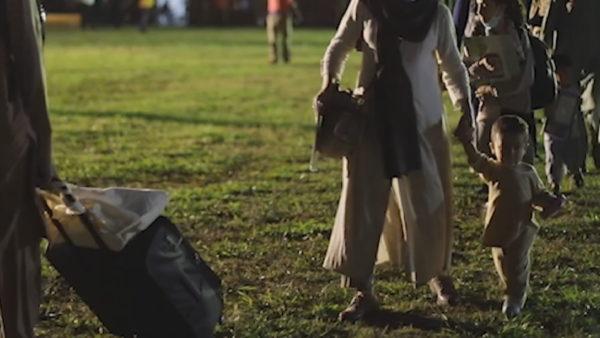 Poloni, ndërron jetë një tjetër fëmijë afgan nga kërpudhat helmuese