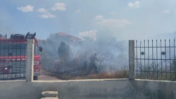 Zjarrvënie e qëllimshme, piromanët djegin edhe oborrin e konviktit të studentëve në Korçë