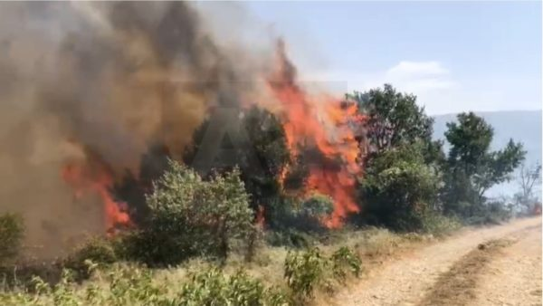 Zjarre edhe në Has, shpëtohen banesat në Pogaj