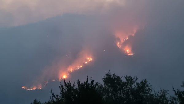 Zjarr masiv në pyjet e Voskopojës, Peleshi: I qëllimshëm, vështirë të ndërhyhet me helikopter