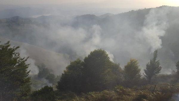 Vatra të mëdha zjarri në Vaun e Dejës, rrezikohen bagëtitë
