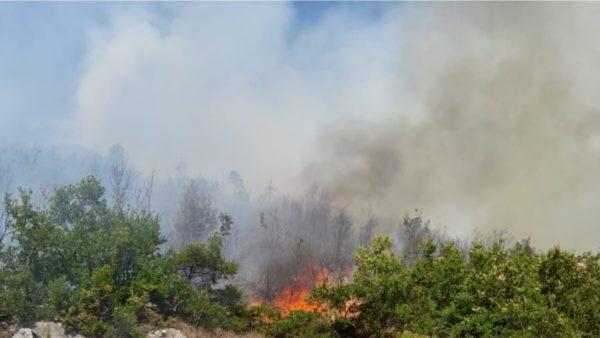 Ende aktive 3 vatrat e zjarrit në pyjet e Korçës, zjarr edhe në masivin pyjor të Mokrës