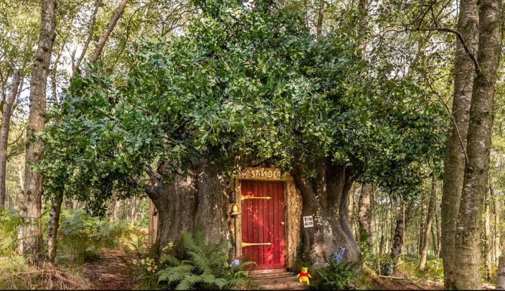 """Një shtëpi e frymëzuar nga """"Winnie the Pooh"""" e disponueshme në Airbnb"""