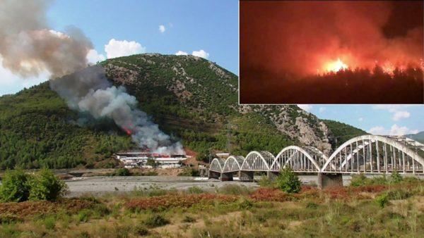 """Lezhë, shkrumbohet stalla pranë """"Urës me Harqe"""", zjarri vijon të djegë pyllin"""