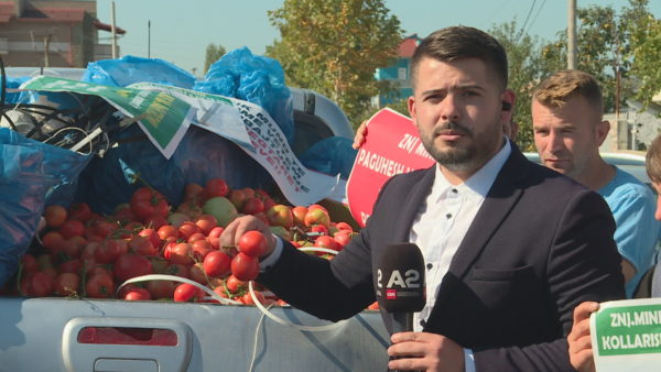 Protestë pranë serave, fermerët: Ky sezon dështoi, na kompensoni humbjet dhe rrisni subvencionet