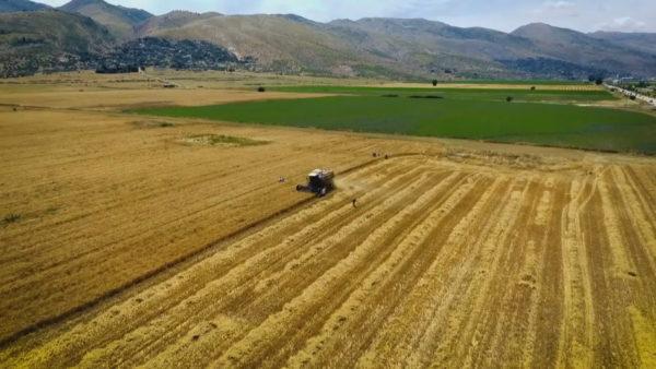 Sfidat e bujqësisë, prioritet orientimi dhe mbështetja e fermerëve
